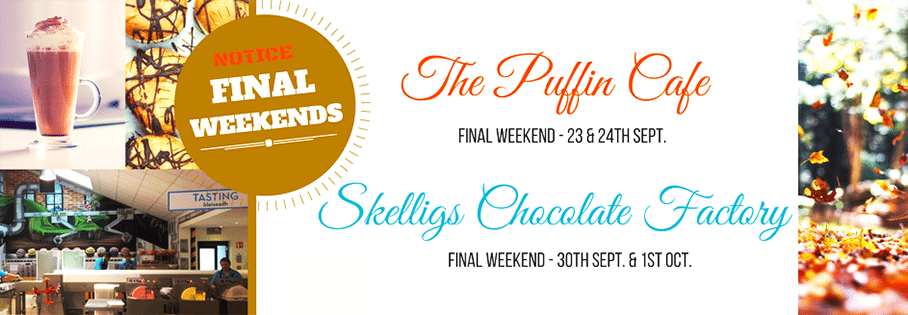 Skelligs Chocolate opening hours